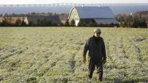 Farmer Reg Hamill walks through his frost covered field near Borden-Carleton, PEI as the Confederation Bridge looms in the background, in this 2009 file photo.
