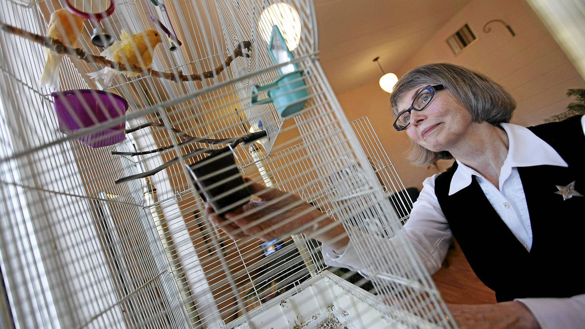 Sister Lesley Sacouman, executive director of Holy Names' House of Peace, tends to Eden and Hosanna, a pair of canaries, in Neighbours, her residence for single women in transition in downtown Winnipeg.