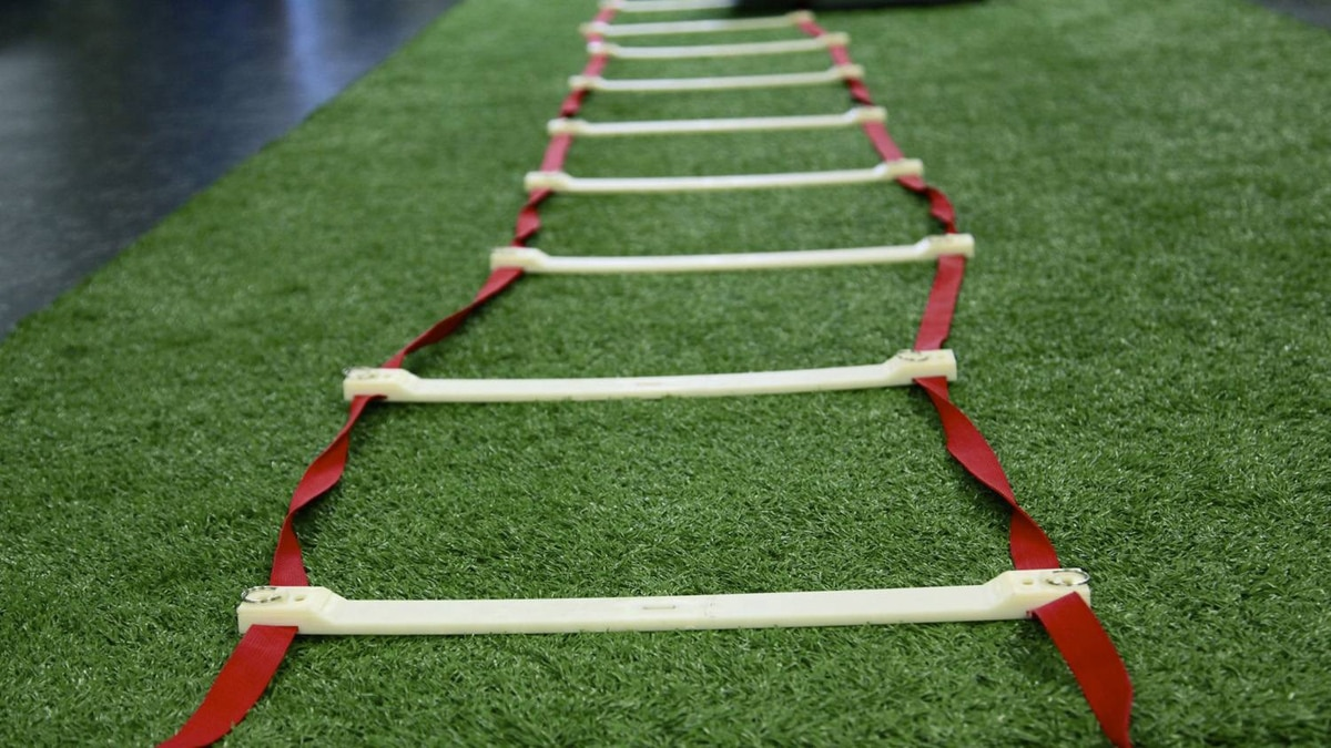 Agility ladder on artificial turf at the Motion Room