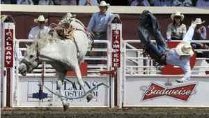 Tyler Corrington of Hastings, New Mexico gets bucked off the horse Blue Too in the saddle bronc event.