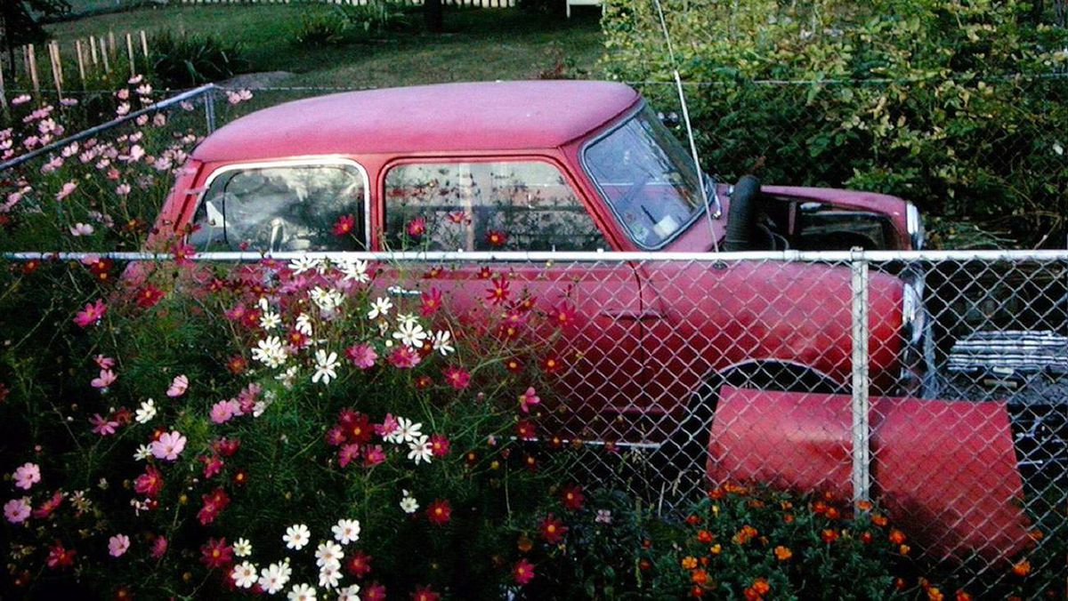 My beloved 1959 Morris 850 (cost $350) died in 1966 on the way home from Tennessee and had to be towed to Weston by my dad. With a really blown engine, someone towed it away for $50. Sigh.....