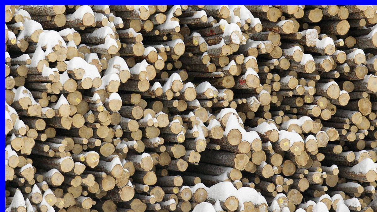 Snow covered logs are seen outside the Babine Forest Products mill in Burns Lake, B.C. , Jan. 22, 2012.