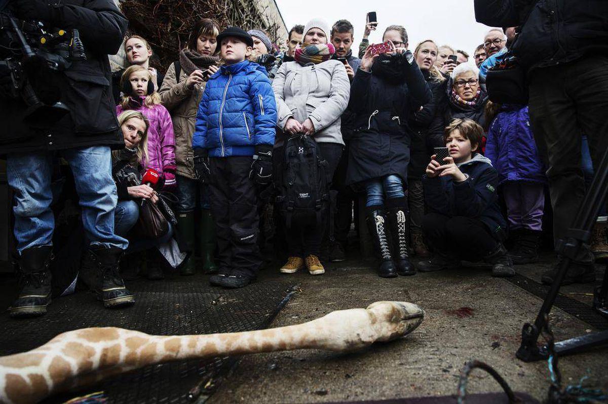 Scanpix Denmark/Reuters