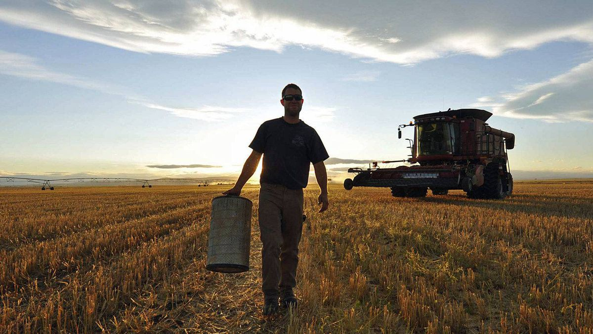 A farm worker carries equipment during the wheat harvest near Fort MacLeod, Alta., on Sept. 26, 2011.