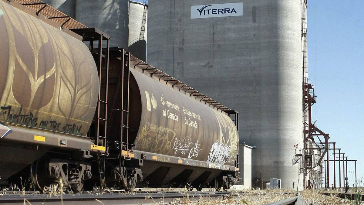 Rail cars await loading at a Viterra grain terminal near Regina.