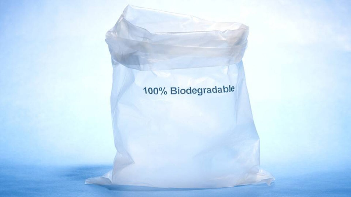 Biodegradable Bags Are Good For Your Environment and Great For Your Company