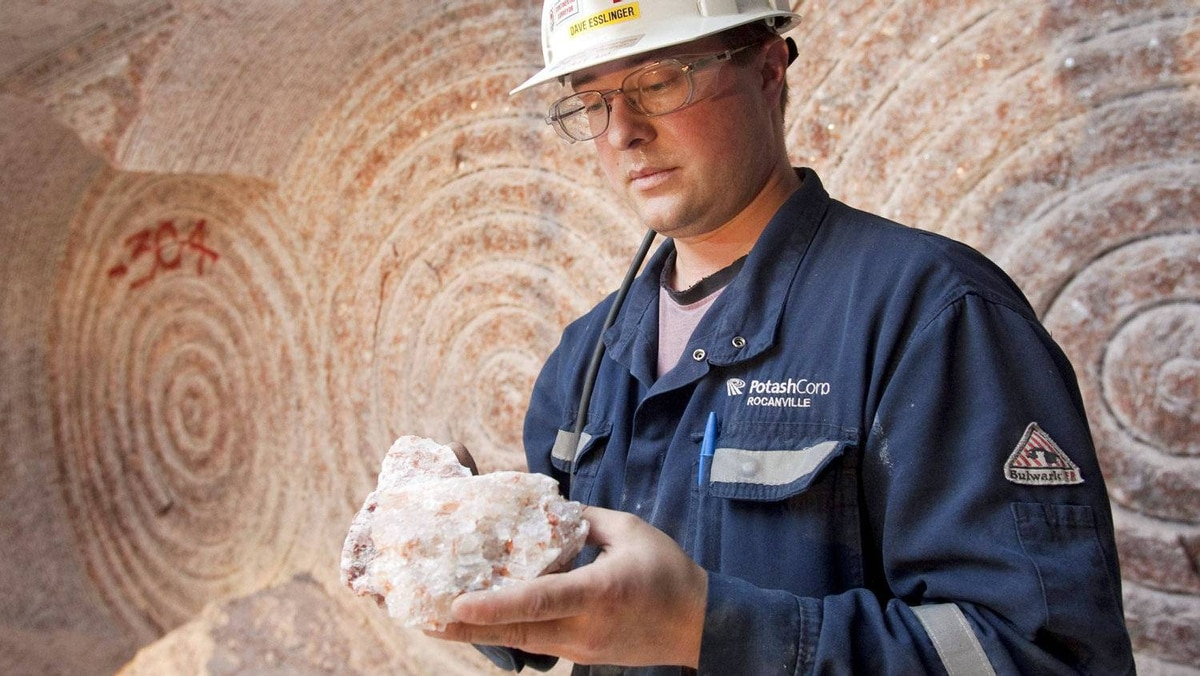 A production supervisor shows off a sample of potash 1,000 metres at a mine in Saskatchewan on Sept. 30, 2010.