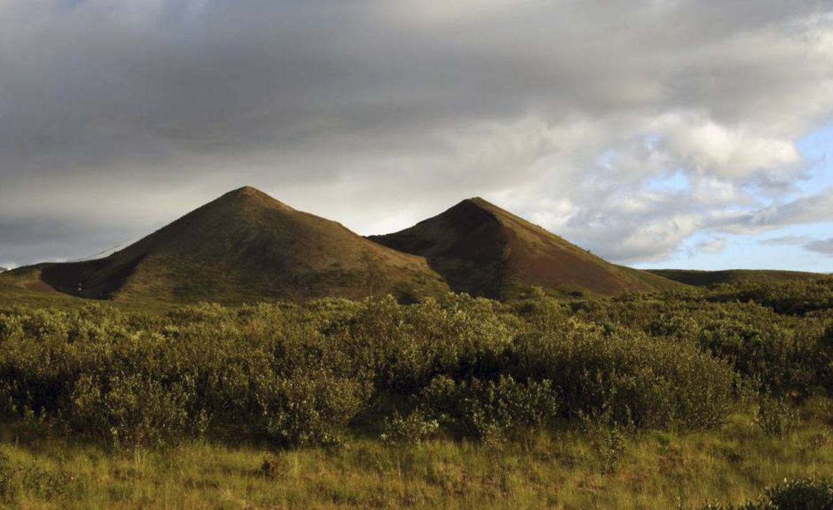 Here the brush is thriving, but many of the cinder cones at Mount Edziza are devoid of vegetation.