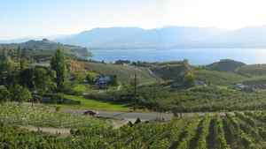 The survey says Penticton is becoming a year-round vacation hot spot with its beautiful beaches, a burgeoning wine industry and many outdoor activities.