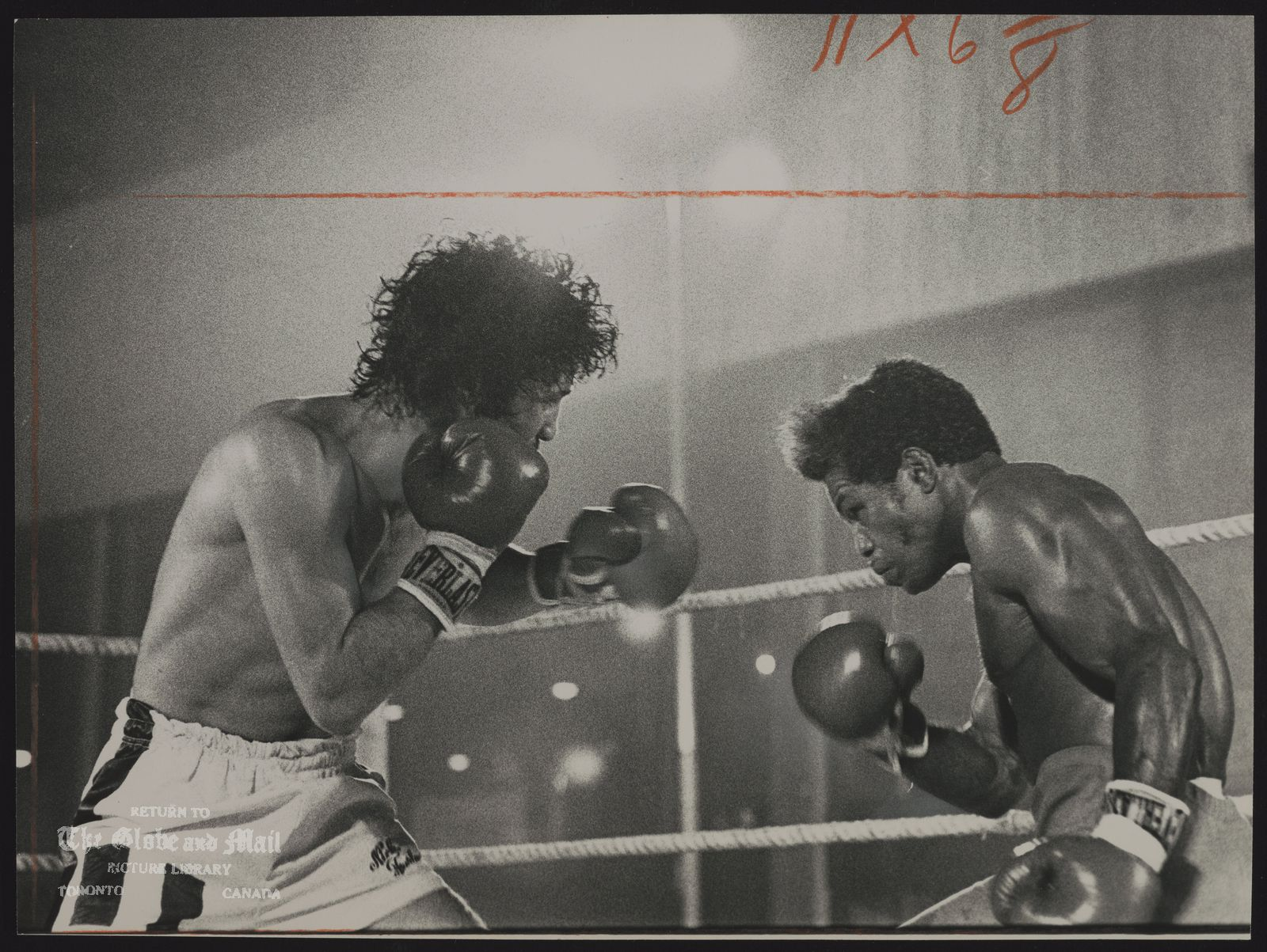 Nicky FURLANO Toronto. Boxer Nicky aiming a left jab at Franklin: for the rest of the fight, Franklin's best weapon will be irony, mocking the young prospect, the hometown crowd, the referee, the whole fight game.
