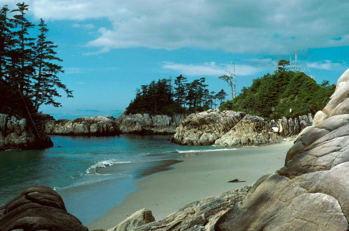 Lookup A Number >> The secret science lab on Calvert Island - The Globe and Mail