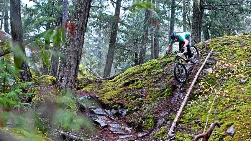 Downhill mountain biking in Whistler, B.C.