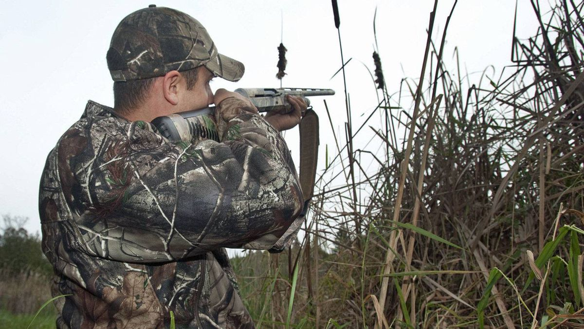 A duck hunter takes aim near Fenelon Falls, Ont., on Oct. 25, 2011.