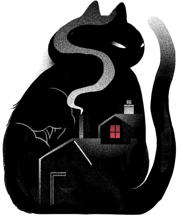 I hate cats but I needed a mouser – and fast