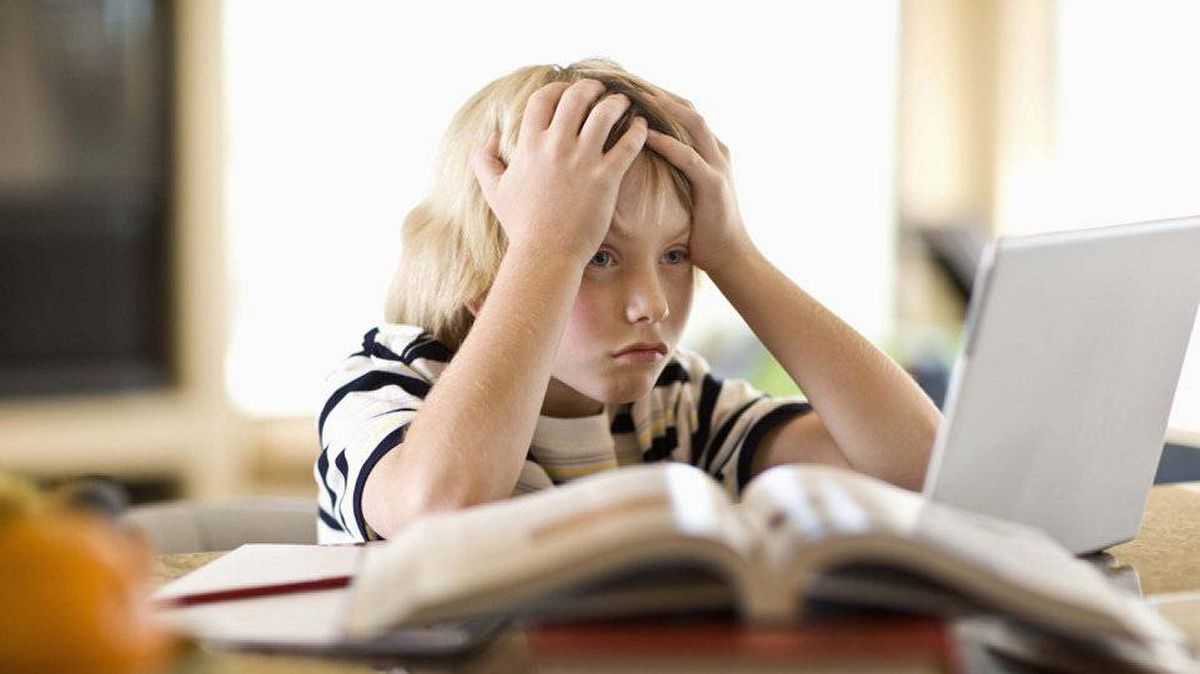 Does 20 minutes of homework sound right for a Grade 2 student? - The ...