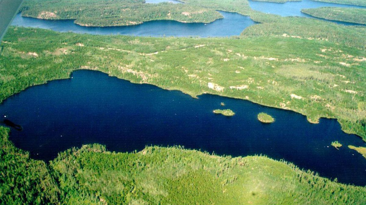 An aerial photograph shows one of the many bodies of water used for research in Northewestern Ontario's government-run Experimental Lakes Area
