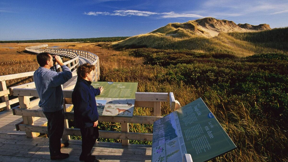 Walking the boardwalk at Greenwich, Price Edward Island National park.