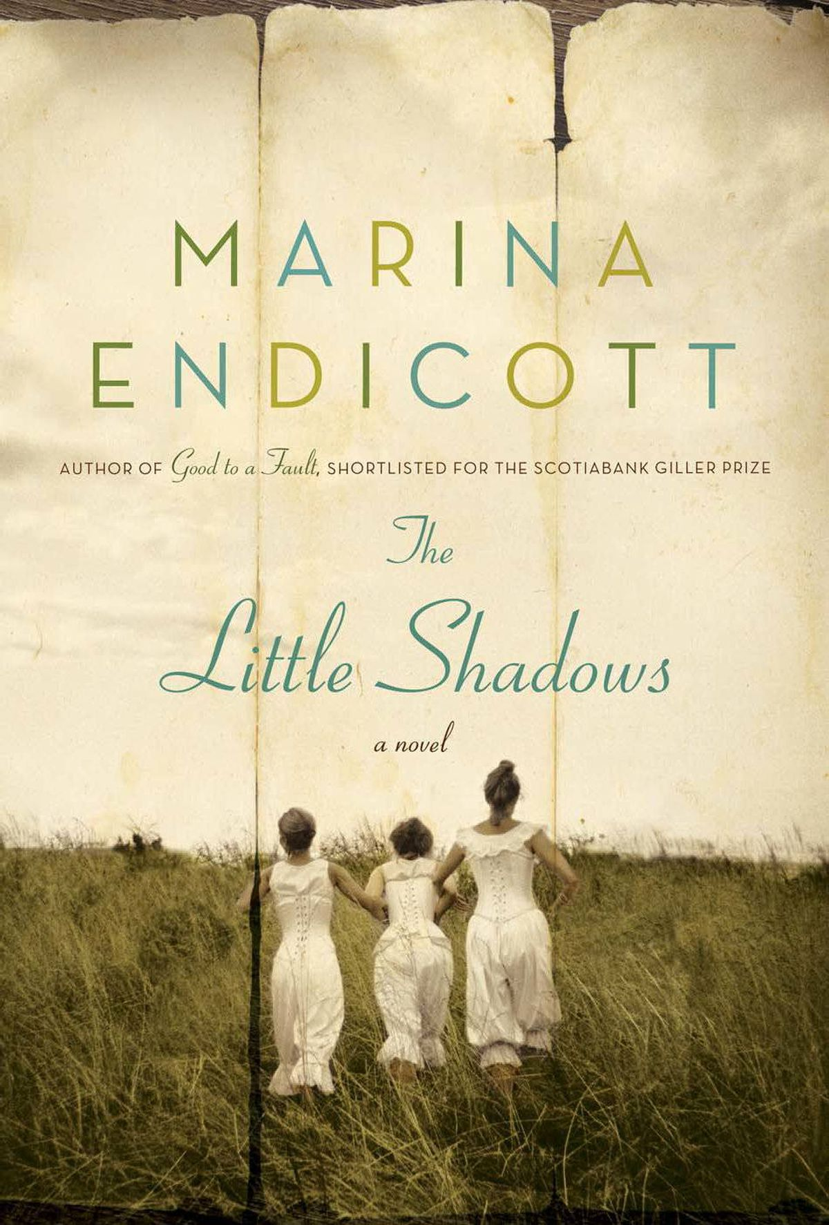 THE LITTLE SHADOWS By Marina Endicott (Doubleday Canada) Featuring three fatherless sisters and their widowed mother, The Little Shadows is set on vaudeville stages all over the U.S. and Canadian West around the First World War. The novel features Endicott's trademark wry sensibility and pithy lyricism, and her skill at pulling the rug out from under the reader's feet. – Katherine Ashenburg