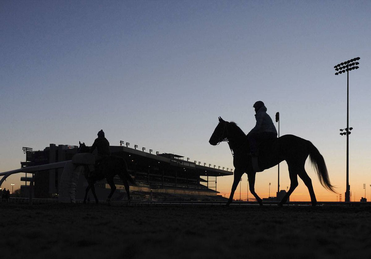 A rider exercises a horse at Woodbine Racetrack in Toronto early on Tuesday. The thoroughbred season gets underway at Woodbine on Friday.