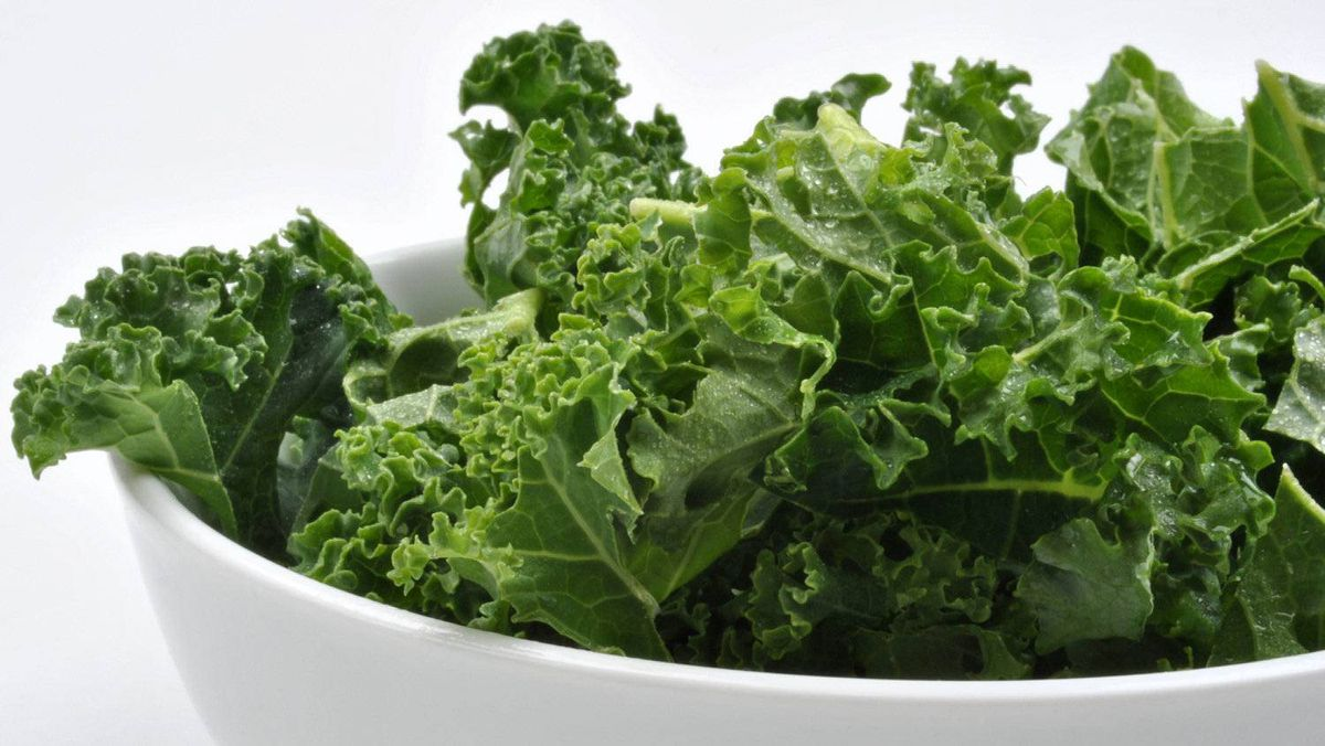 organic tender leaf curly kale washed and ready to cook. Stock image