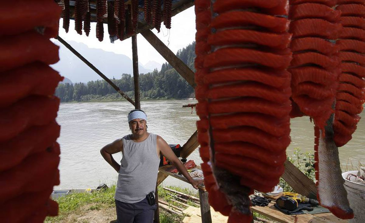 Tyrone McNeil of the Sto;lo Tribal Council stands in his camp with sockeye salmon that has been cut into strips and hung on a dry rack to cure for up to ten days on the banks of the Fraser river near Hope, BC.