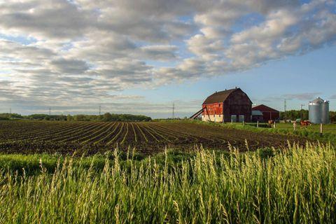 Canadian farmland values see major increase in 2014