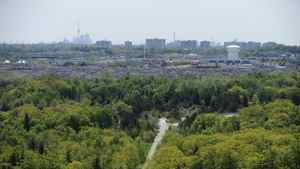 The high rise condos and apartment buildings near Kennedy Rd are seen in the distance beyond the forests of Rouge Park which is slated to become a national park.