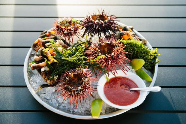 From sausage to stout, seaweed stars on the menus of Tofino, B.C.