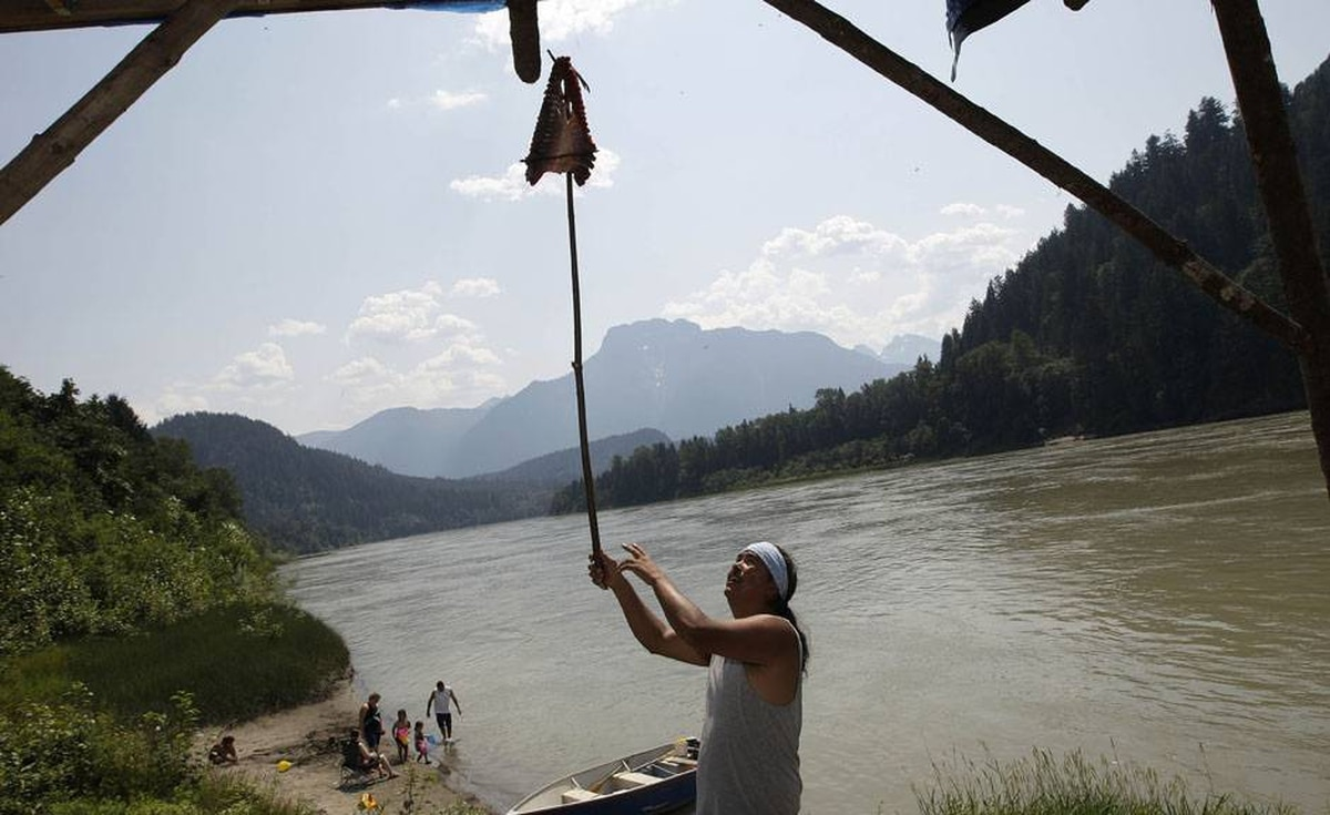 Tyrone McNeil of the Sto;lo Tribal Council hangs a sockeye salmon cut in the tradition of his mother on a dry rack to cure for up to ten days as family memebers play on the banks of the Fraser river near Hope, BC.
