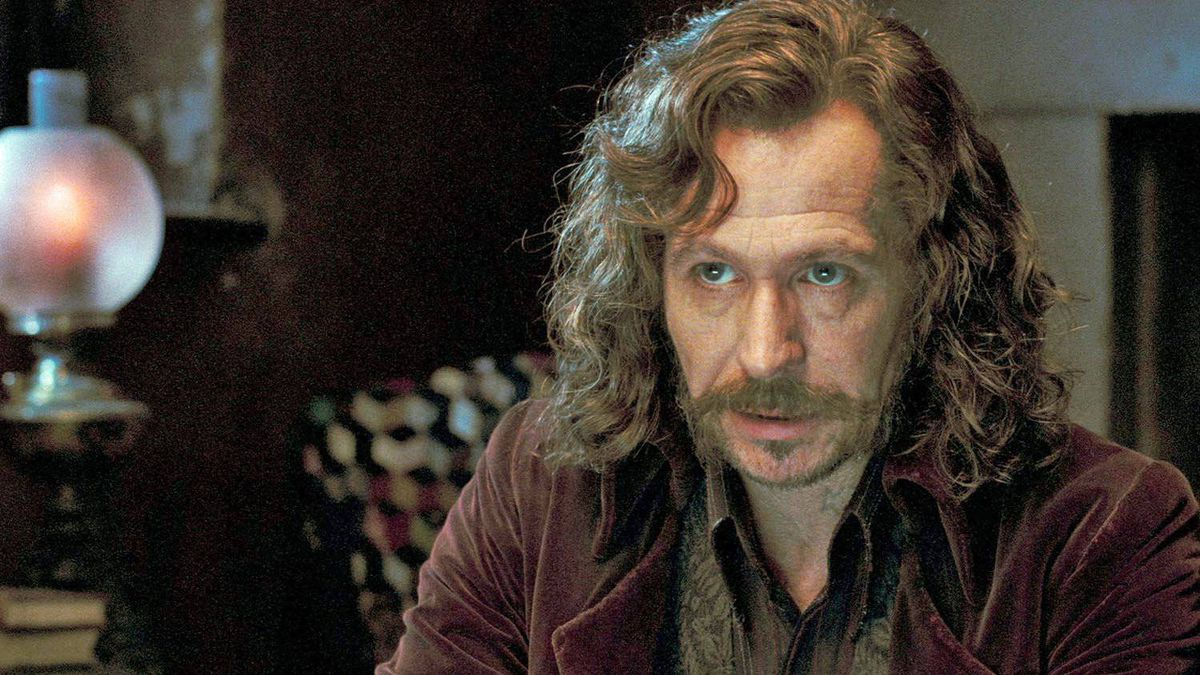 Gary Oldman as Sirius Black in Harry Potter and the Order of the Phoenix (2007).