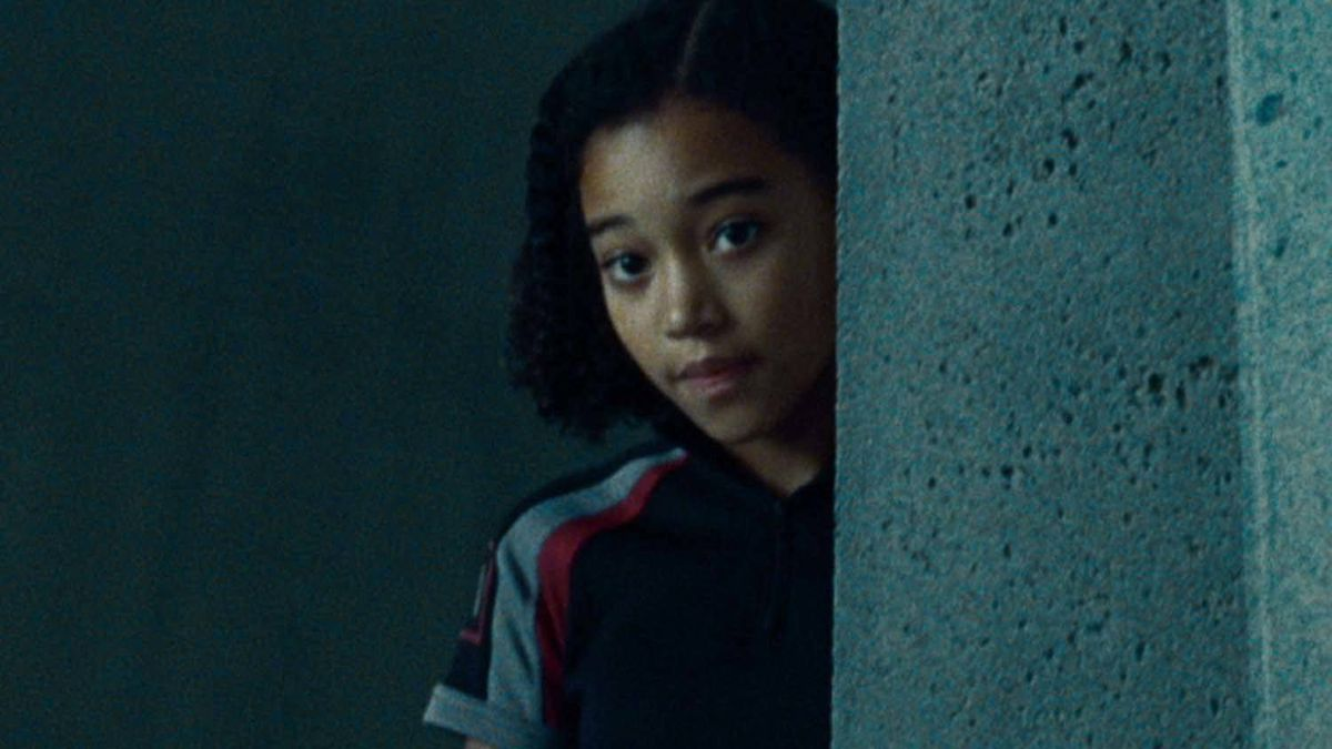 """Coming soon to a crib near you: Amandla Stenberg stars as Rue in """"The Hunger Games"""""""
