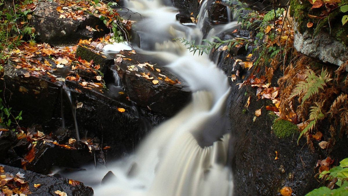 Third prize goes to 'Fall in the park, Fall Stream.'