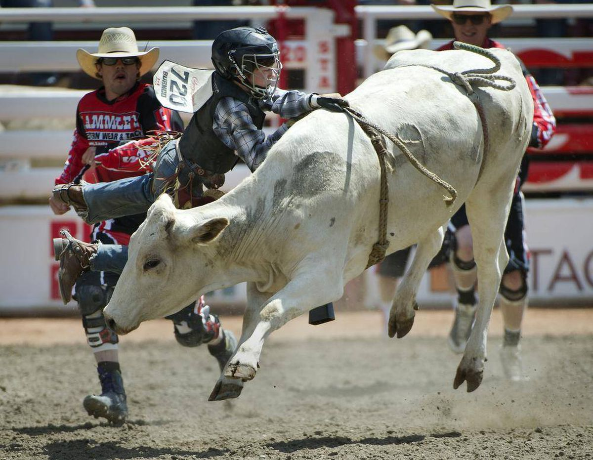 In Pictures Calgary Stampede The Globe And Mail