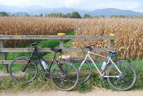 A freewheeling bike adventure through Catalonia