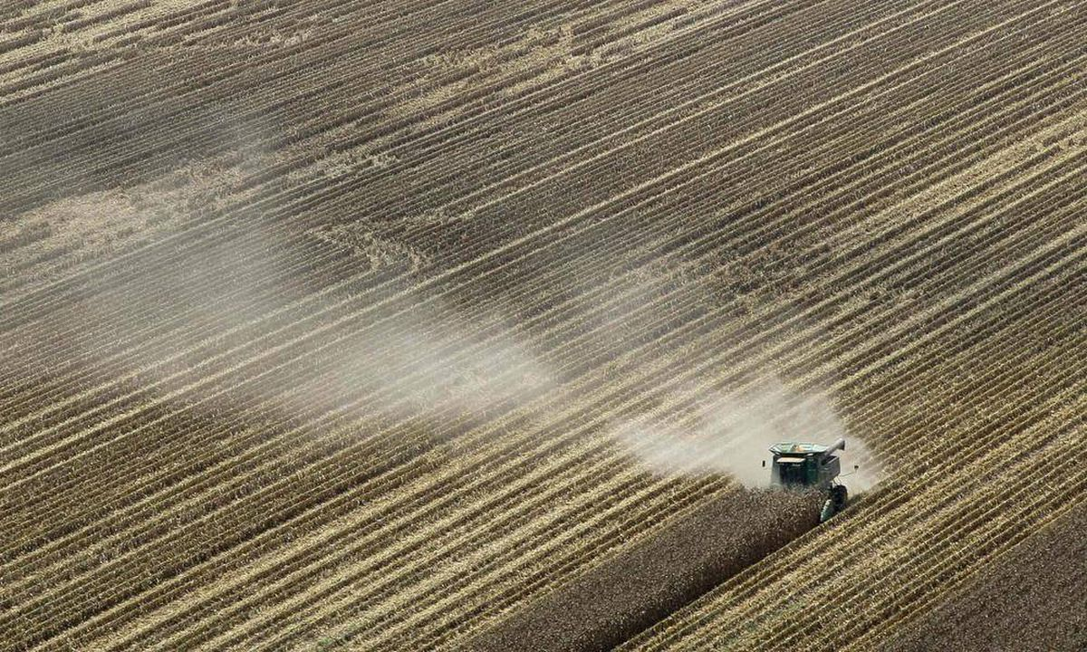 Us Ethanol Makers Eye Pros And Cons Of Corn Alternatives The