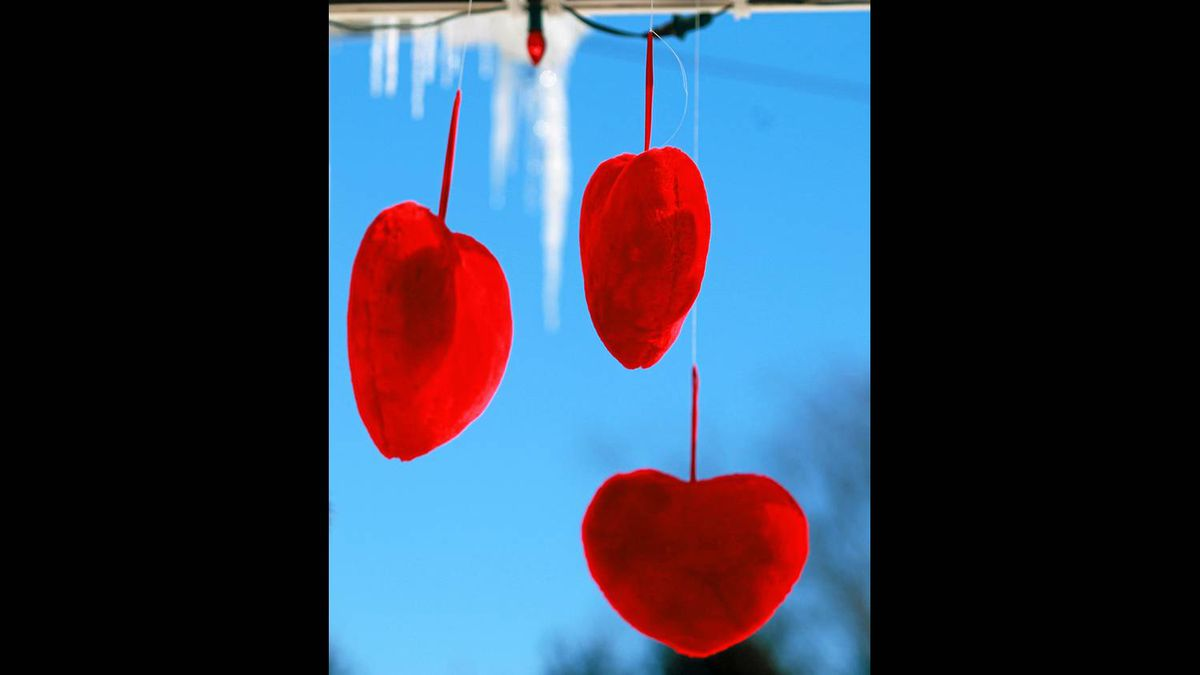 Detail of decorations on front porch belonging to Andre Chalifoux and his wife Cecile Fortin in St-Valentin, Quebec on February 10, 2011.