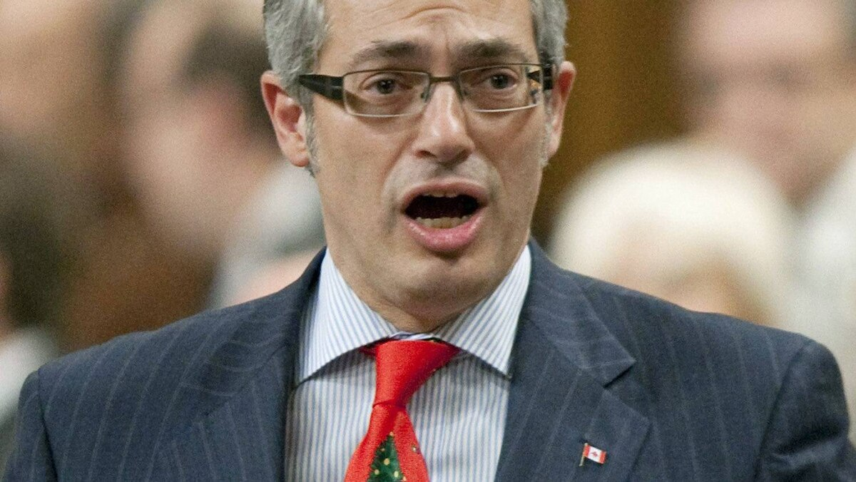 Industry Minister Tony Clement speaks during Question Period in the House of Commons on Dec. 14, 2010.
