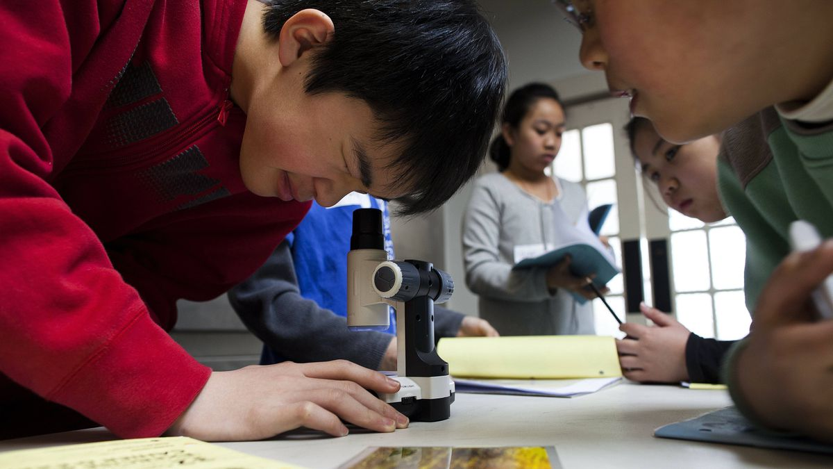 Nicholas Jo, 12, uses a microscope to examine striations in a bullet during a ballistics class at the Vancouver Police Museum.