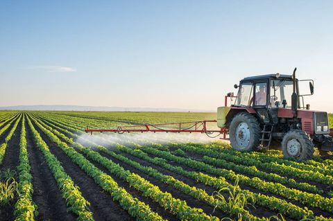 Health Canada plans to phase out controversial pesticide
