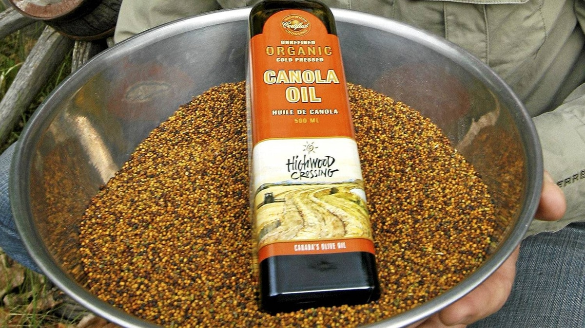 Organic, cold-press canola oil in a bowl of organic canola seeds.