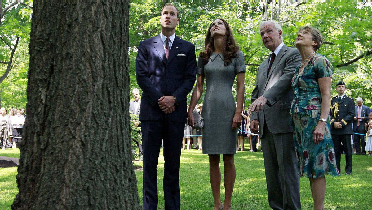 Prince William and his wife Catherine, Duchess of Cambridge, look at a tree planted by Prince Charles and the late Princess Diana with Canada's Governor General David Johnston (2nd R) and his wife Sharon (R) at Rideau Hall in Ottawa July 2, 2011.