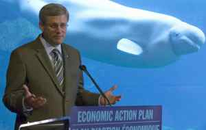 A beluga whale swims past Prime Minister Stephen Harper as he makes a funding announcement at the Vancouver Aquarium on Aug. 9, 2010.