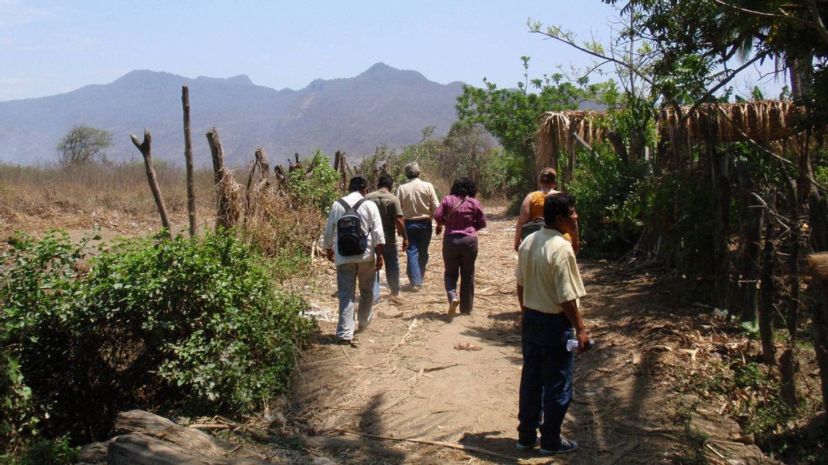 A small group of La Siembra employees visits the cocoa fields of the CEPICAFE Co-op, one of four co-ops in Peru that supply the cocoa used in the making of Camino bars.