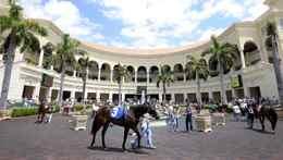 Gulfstream Park Racing and Casino near Ft. Lauderdae, Fla.