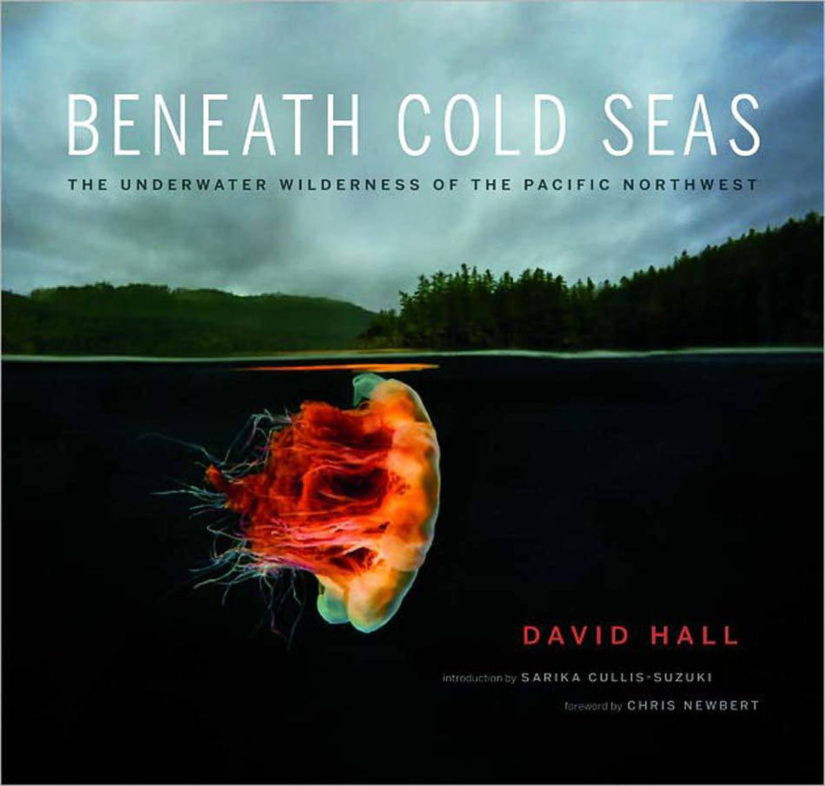 """BENEATH COLD SEAS The Underwater Wilderness of the Pacific Northwest By David Hall (GreyStone, 160 pages, $45) You won't find SpongeBob SquarePants here, but you will find great photos of critters and phenomena from the deepest deeps of the Pacific Northwest. There isn't much light down there, and that makes these photos (and the colours!) of kelp forests and """"scalyhead sculpin"""" that much more remarkable."""