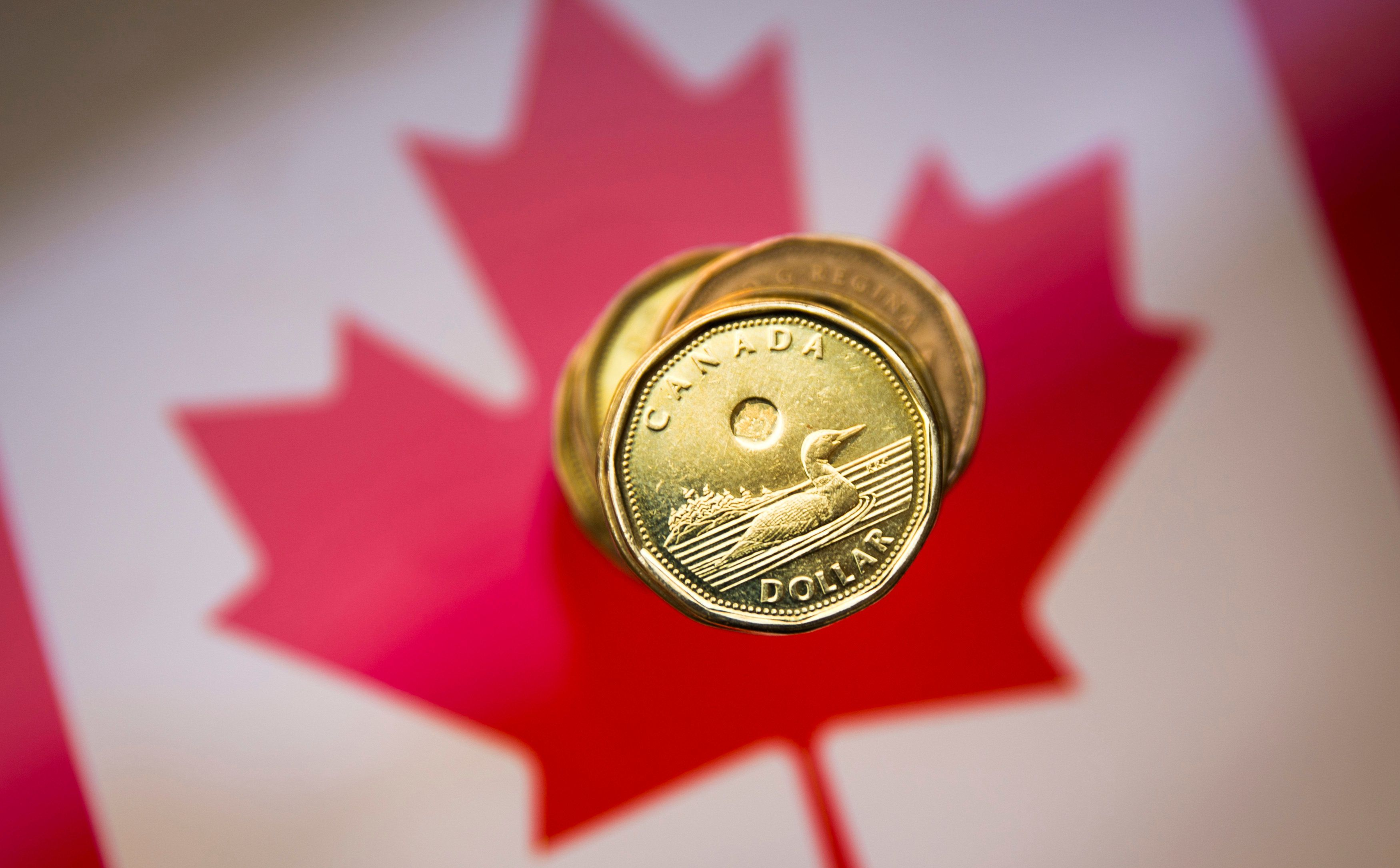 Canadian dollar notches 11-week high as 'risk-on' boosts commodity currencies