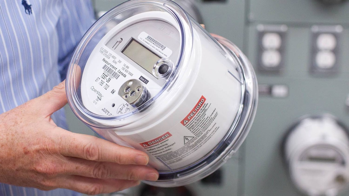 A BC Hydro smart meter. The smart meters wirelessly transmit data back to BC Hydro.