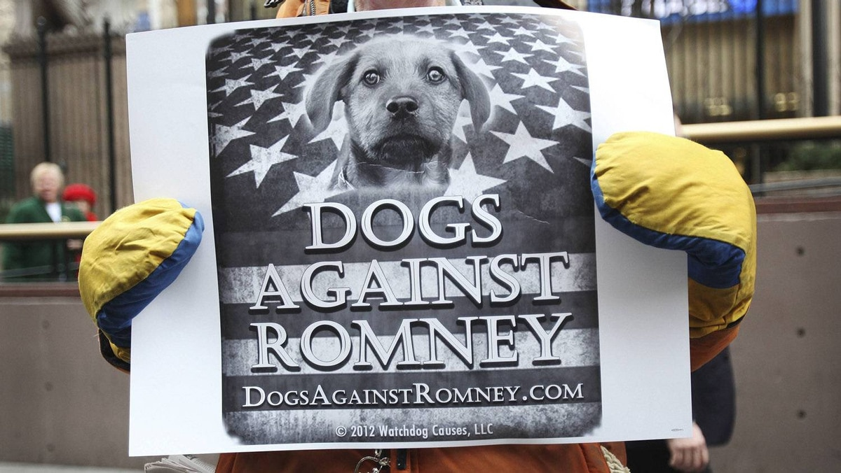 """A man holds a sign during a """"Dogs Against Romney"""" demonstration outside the 136th Westminster Kennel Club Dog Show at New York's Madison Square Garden, February 14, 2012."""
