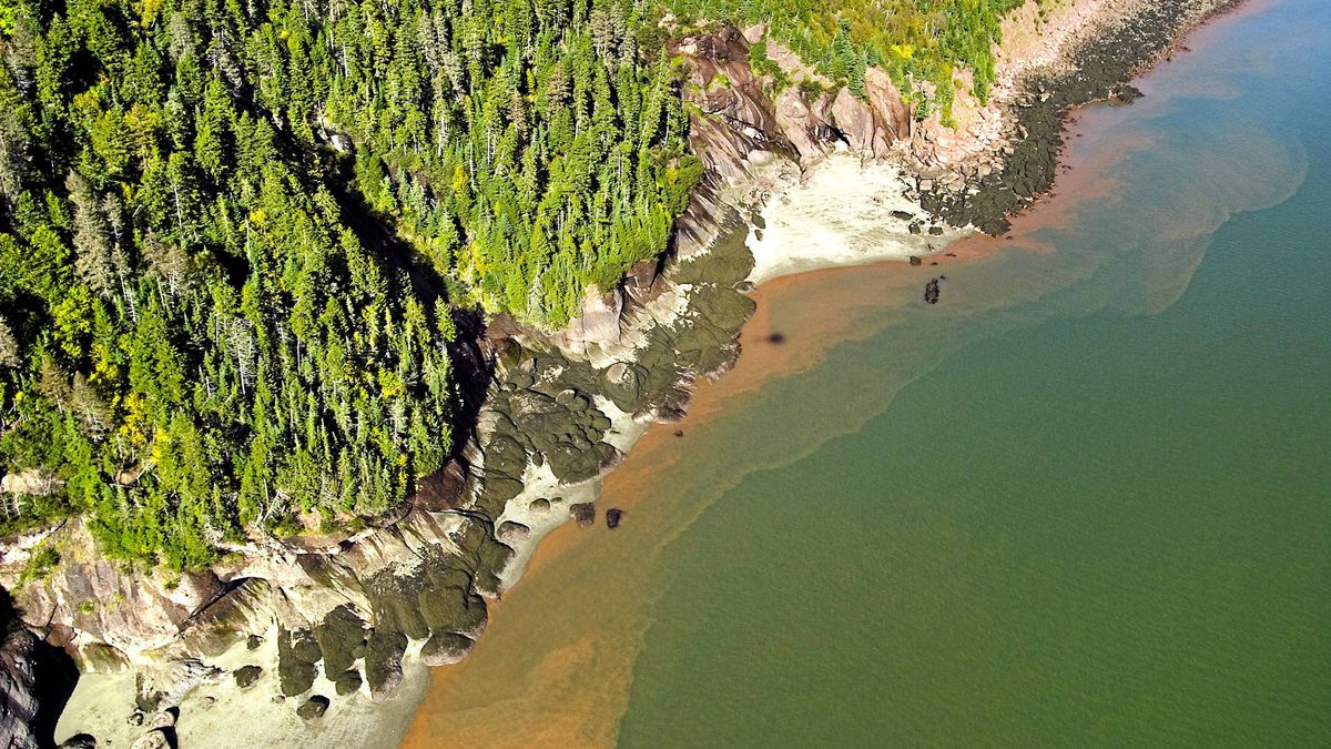 Hike the Coastal Trail to get a closer look at the shoreline in Fundy National Park.