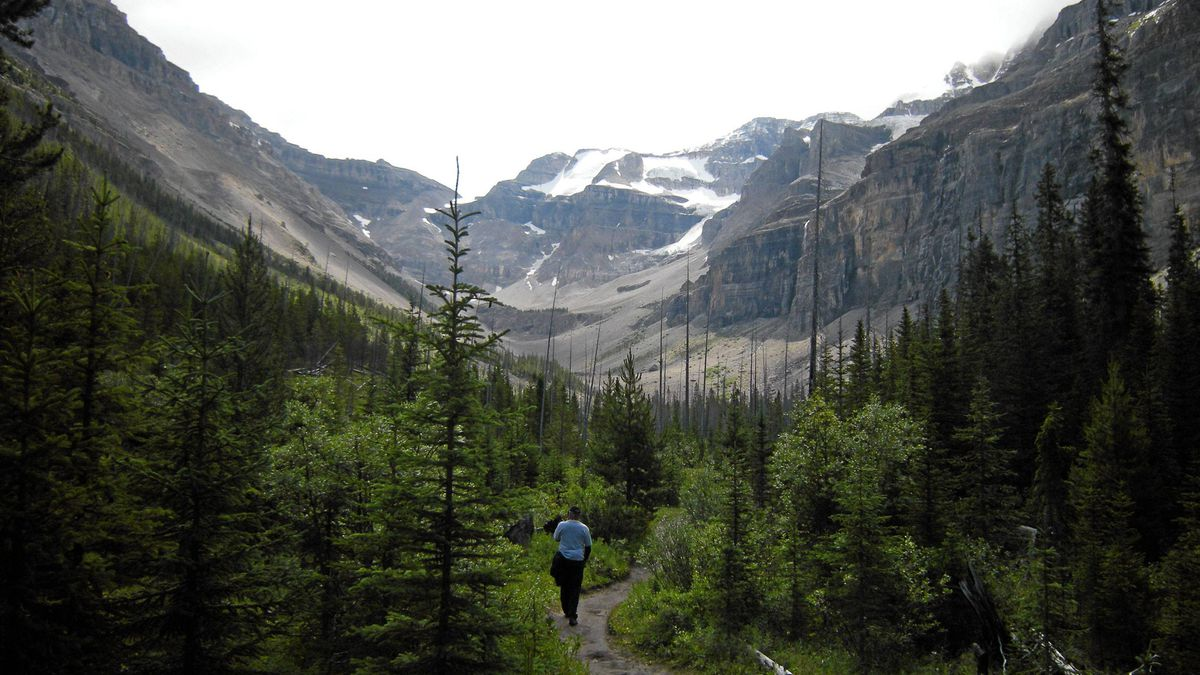 Hiking to Stanley Glacier in Kootenay National Park.